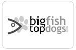 bigfishtopdogs