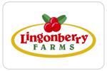 lingonberryfarms